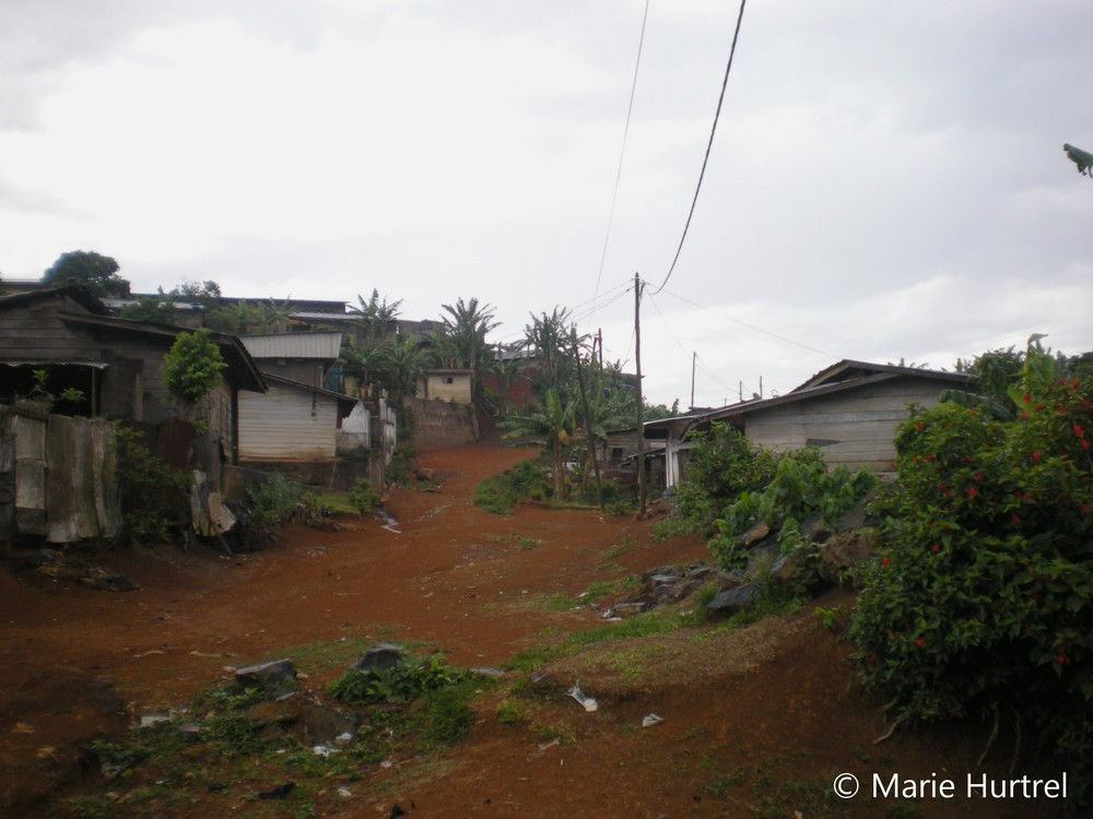 Cameroun-Ouest 2011